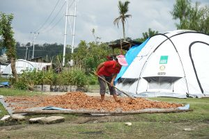 Earthquake, tsunami and tropical storm support